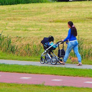 800px-Walking_female_with_stroller_and_dogs