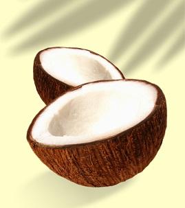 kokosovy