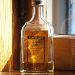Ricinový olej pro krásu – zde jsou důvody proč ho používat